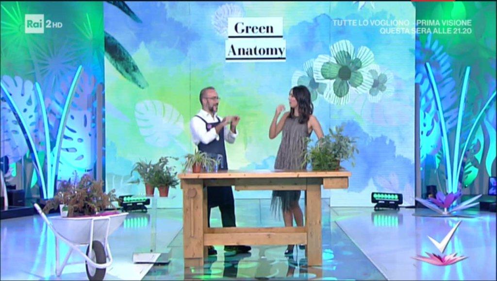 Detto Fatto, il look di Caterina Balivo ed i tutorial della puntata di oggi, 17 gennaio 2018