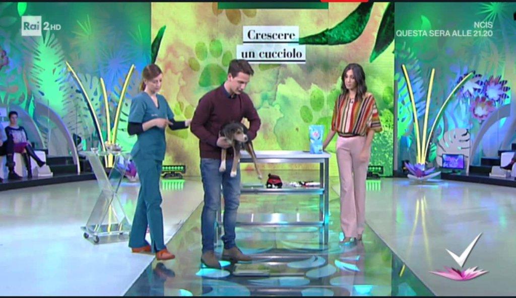 Detto Fatto, il look di Caterina Balivo ed i tutorial di oggi, 7 marzo 2018