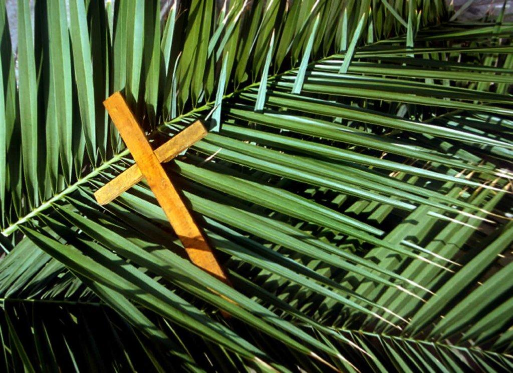 Domenica delle Palme: il significato religioso e perchè si utilizzano le palme e gli ulivi