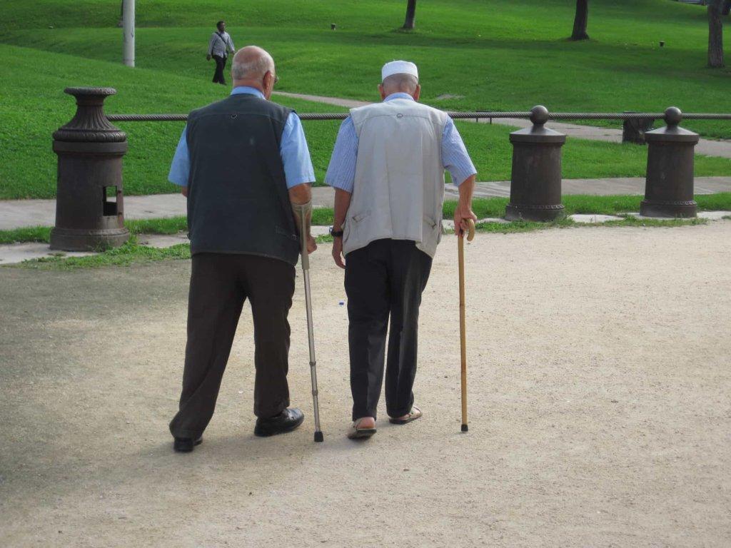 L'Anp-Cia boccia le pensioni di cittadinanza